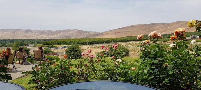 Weintour in Yakima Valley (und was Bier am Ende)